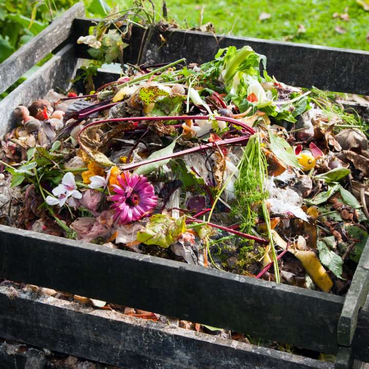 Composting for a more sustainable garden | Tendercare Nurseries