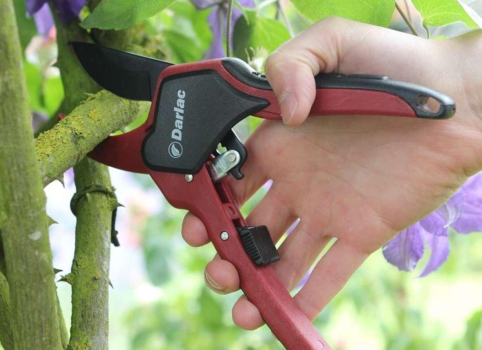 Order garden tools online | Tendercare Nurseries