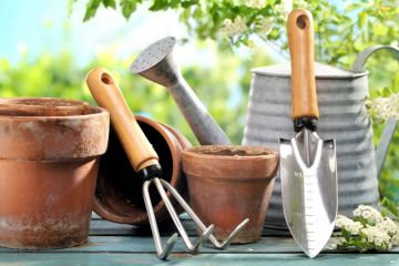 How to choose the right garden tools